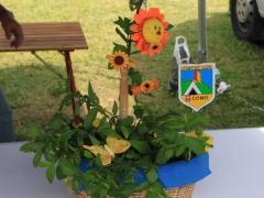 2011-06 Raduno regionale Gera 157.jpg